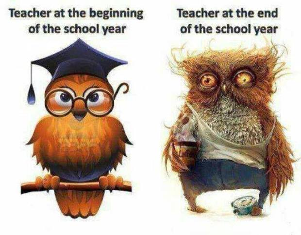 Pretty sure I was owl #2 from the second day of school until about 3 days ago.